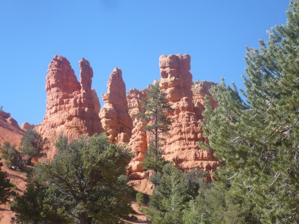Vista de los hoodoos del Red Canyon