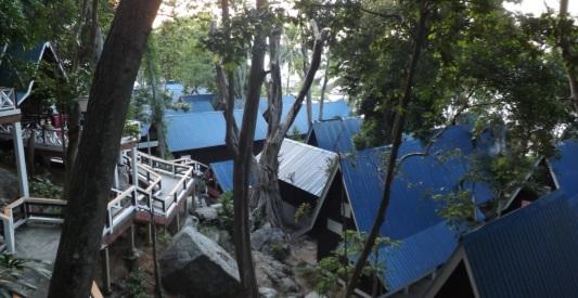 Vistas desde nuestro bungalow (hill view)