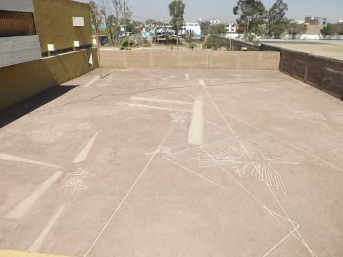 Museo Regional de Ica, Líneas de Nazca